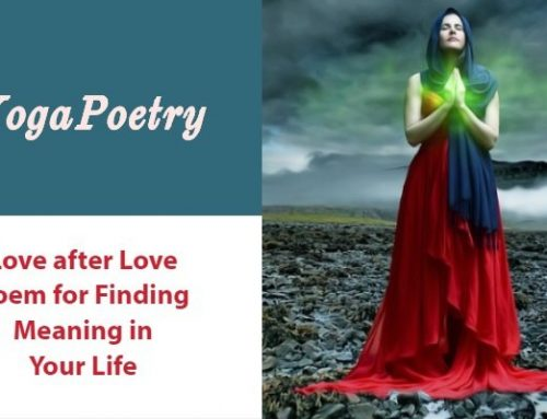 Love after Love Poem for Finding Meaning in Your Life