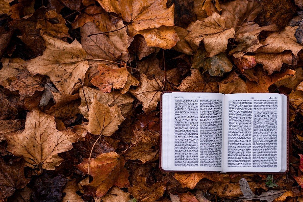 religious and spiritual authority