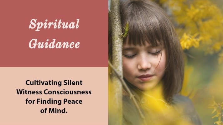 silent witness consciousness