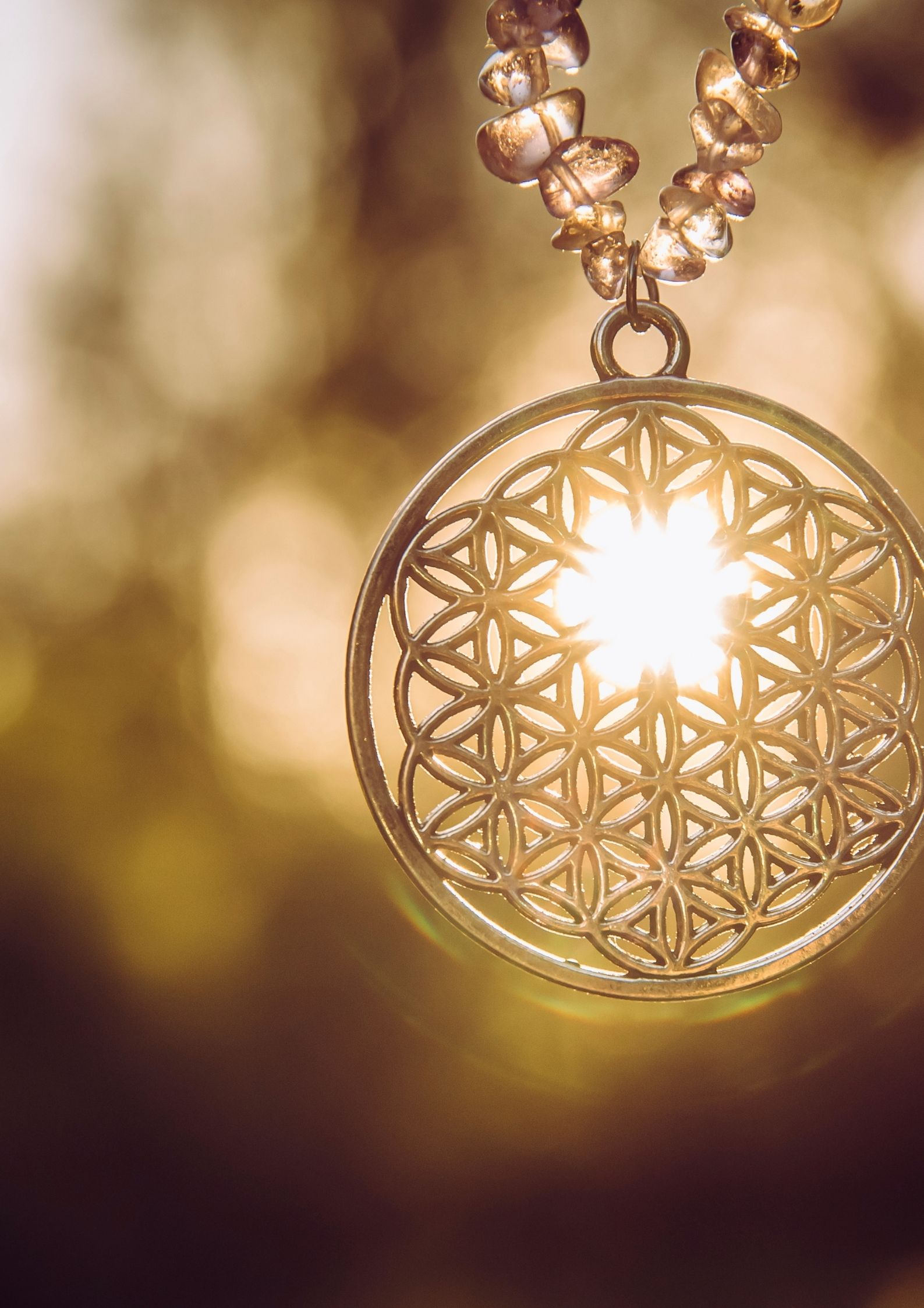 what is the flower of life symbol